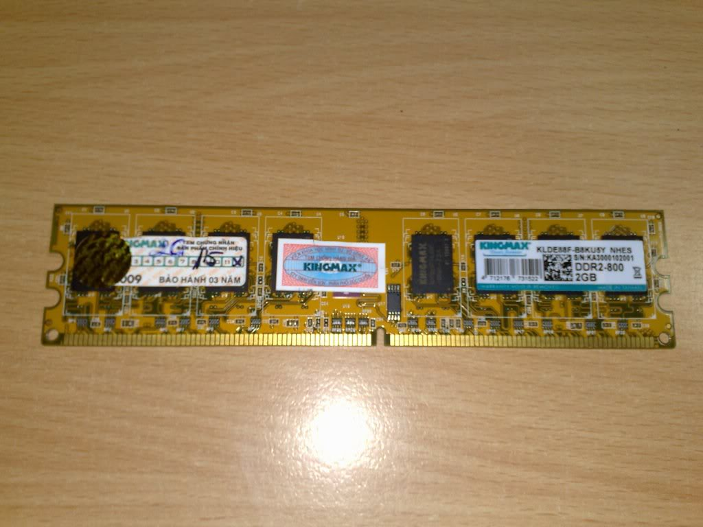 2gb buss 800 ( kingmax)